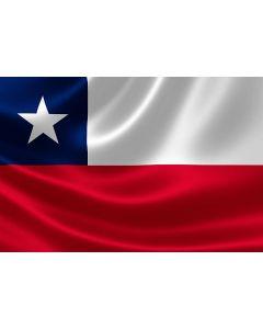 Bandera Poliester 1 X 1.50 Mt