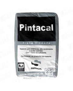 CAL PINTACAL SACO 25 KG